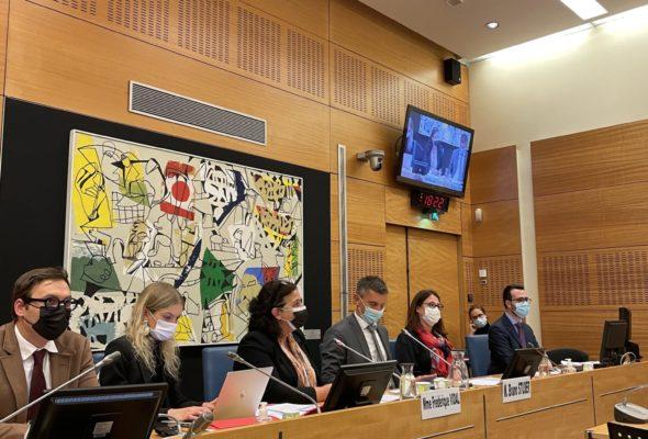 Audition de Mme Frédérique VIDAL, Ministre de l'Enseignement supérieur, de la Recherche et de l'Innovation, sur la rentrée universitaire